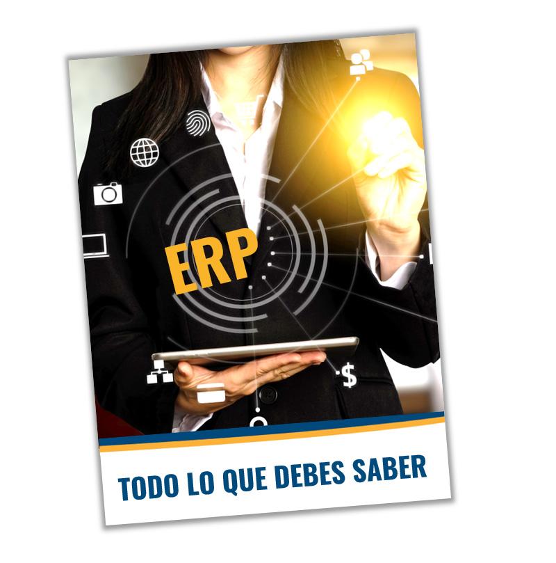 guia sobre ERP